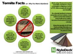 Termite facts and NyloDeck benefits
