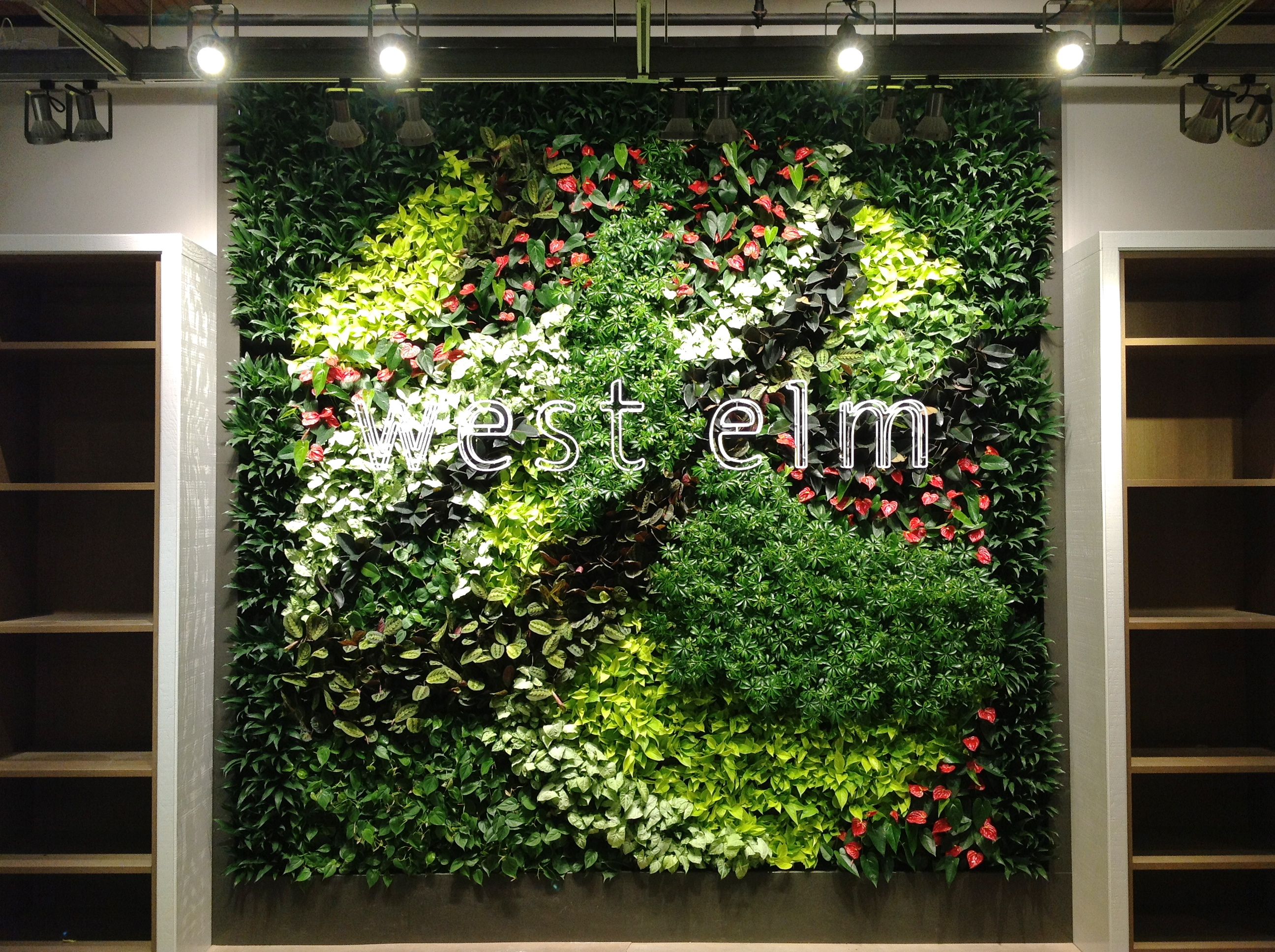 Gsky green wall brings life to west elm s new montreal - How to make a living wall ...