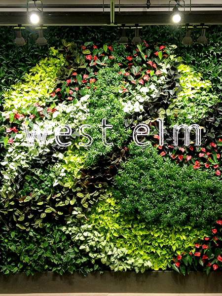 Gsky Living Green Walls: GSky Green Wall Brings Life To West Elm's New Montreal