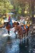Traverse the mountain trails on horseback at Barnsley Resort.