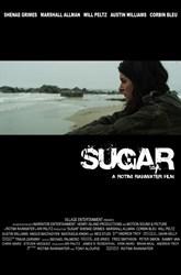 Elliott Broidy & Online Platform - Sugar