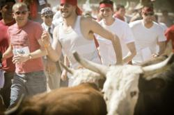 Running with the Bulls USA