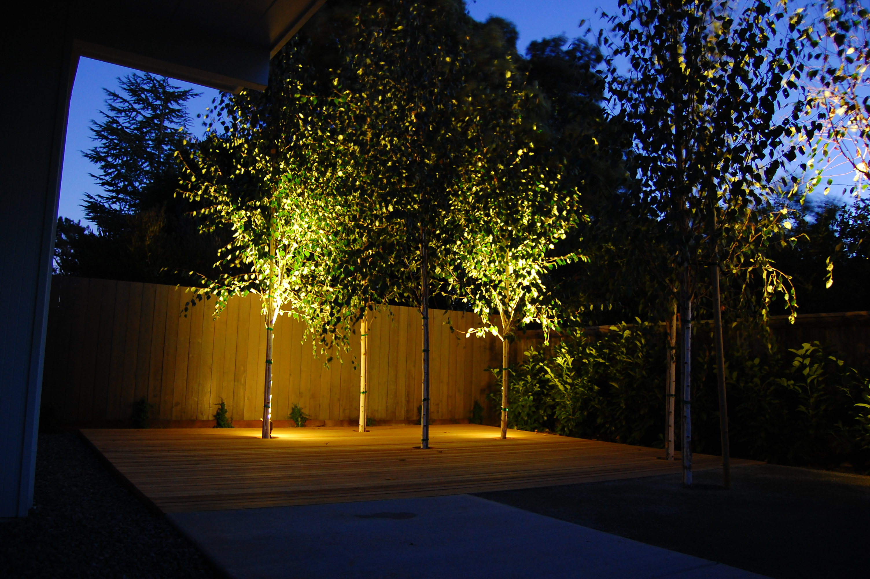 Landscape Lighting Ideas Trees : Outdoor lighting landscape room ornament