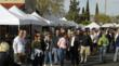January Carefree Fine Art & Wine Festival
