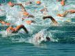 foreunner 310xt, buy forerunner 310xt, open water swim, maps, gps