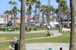 zipline - Flightlinez - Venice Beach