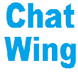 Dynamic and Informative Inquiry Tool for Websites Offered by ChatWing App