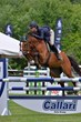 2013 Ox Ridge Charity Horse Show a Smashing Success, Remains Fairfield County's Premier Equestrian Exhibition