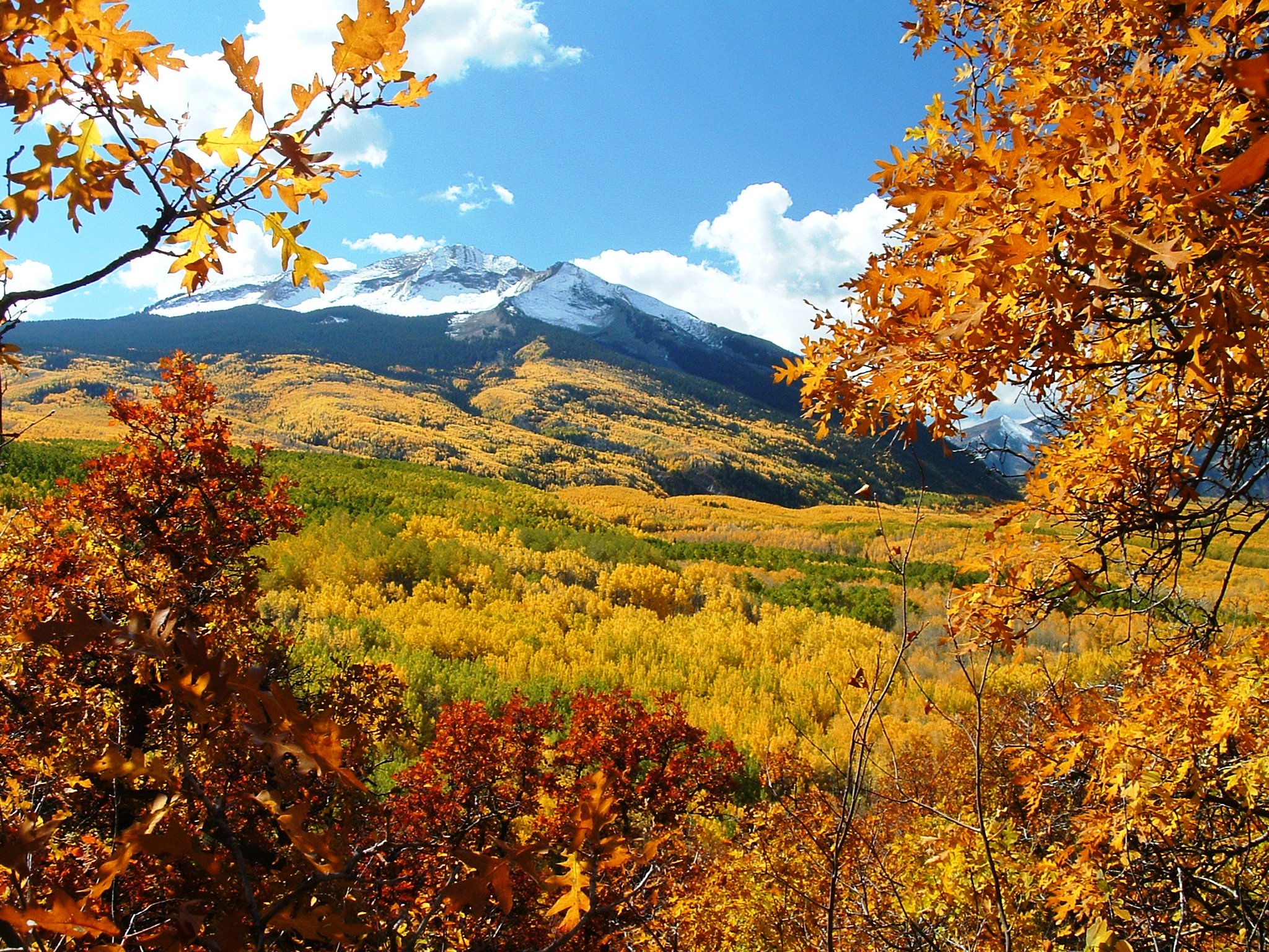 Spectacular Fall Events & Foliage In Gunnison-Crested