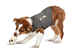 ThunderWorks Offers the Most Complete Line of Pet Stress Solutions,...