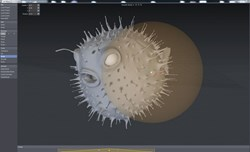 ChronoSculpt 3D sculpting for LightWave 3D, 3ds Max, Maya, Modo, Cinema 4D