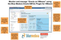 Monitoring and Managing Oracle Workloads on VMware with Oracle EM12c