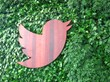 twitter, twitter hq, twitter headquarters, gsky, green walls, living green walls, living wall, vertical green wall, versa wall