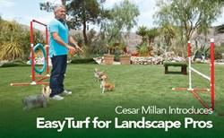 Cesar Millan EasyTurf Backyards Dog Dogs 2