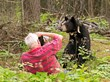 Dr. Lynn Rogers captures a moment with Lily - June 29, 2013
