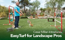 Cesar Millan EasyTurf Backyards Dog Dogs 2