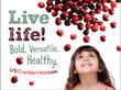 Big Cranberry Meets Big Apple -- Cranberries Make a Bold, Versatile,...