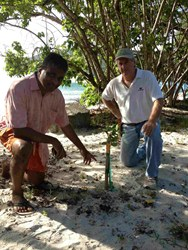 Harith Wickrema and Gary Ray examine sea grape seedling planted as part of the Eco Serendib Beach Restoration Project on St. John in the US Virgin Islands