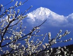 Japan Hiking Vacation