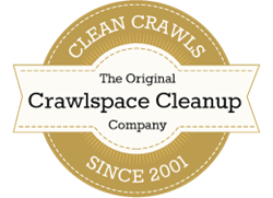 Attic and Crawlspace Cleaning