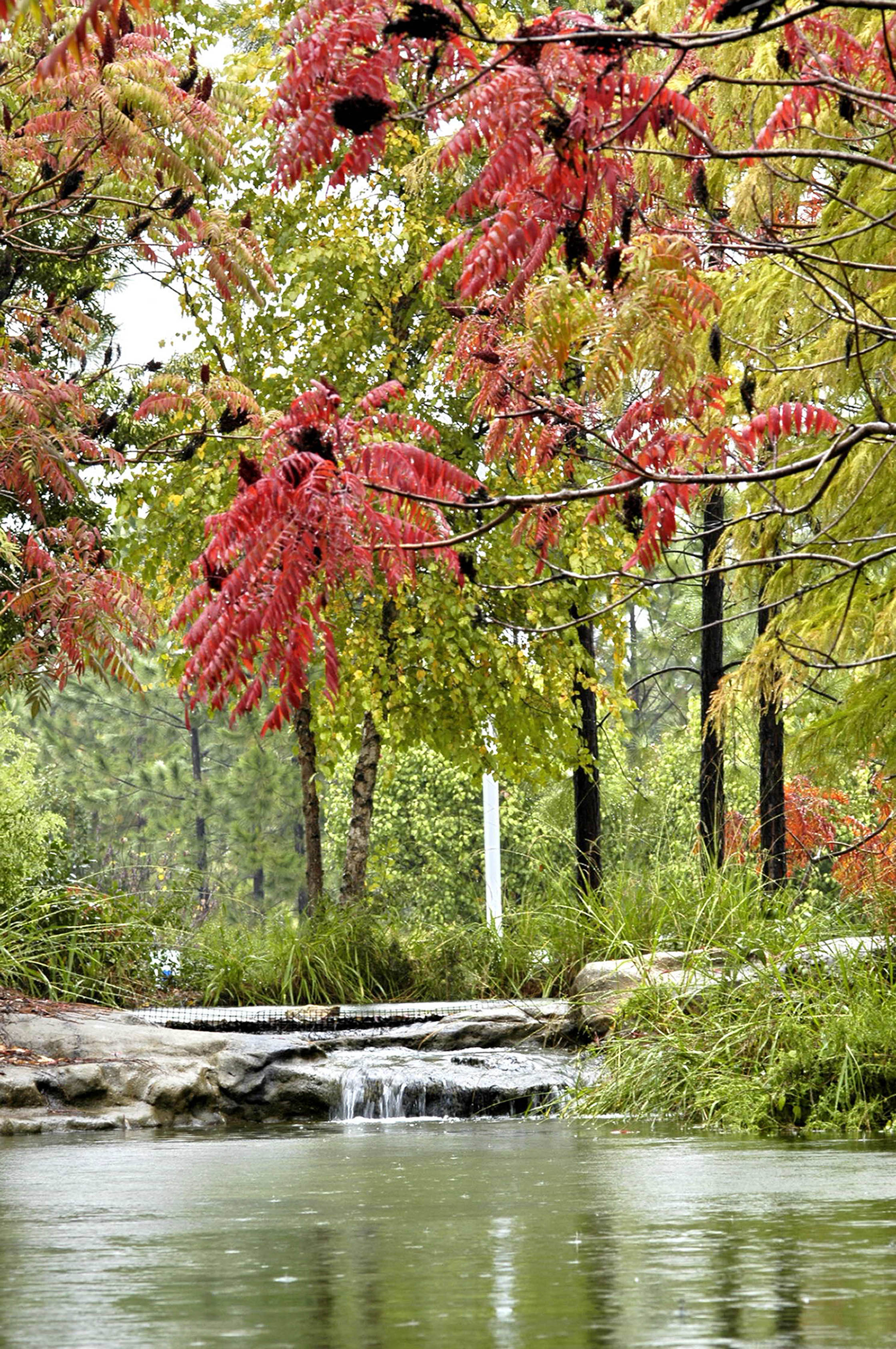 Of tourism gears up for second annual scenic fall foliage trail