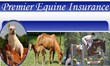 Best Rated Horse Insurance in the Industry
