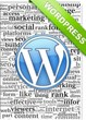 Web HSP Announces the Debut of WordPress Hosting Packages to Small Business Owners in the United States Beginning in October of 2013