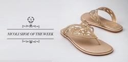 NICOLI - The luxury crystal embellished shoe and handbag brand - Dubai - shop online at www.nicolishoes.com