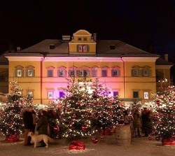 Christmas markets by luxury train from the Luxury Train Club