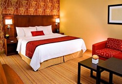Hotels in Bellevue Washington, Hotels near Microsoft Campus, Hotels near Redmond WA