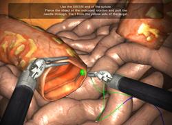 Robotic Surgery Simulation Training