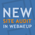 WebMeUp Site Audit module