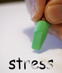 article on stress and exercise