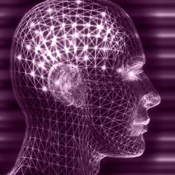 Psychoneuroimmunology CE Course for Mental Health Professionals Updated at HealthForumOnline