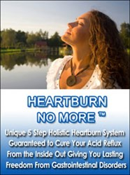HeartBurn No More System Cure