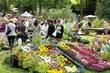 Fleurs en Seine fête ses 10 ans aux Mureaux