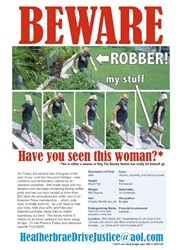Wanted Poster for Amazon Package Stealer