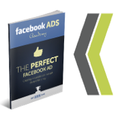 FB Ads Academy - The Perfect Facebook Ad by Brian Moran