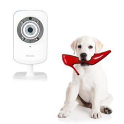 PhantomLink Wireless Pet Camera