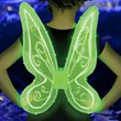 Lighted Fairy Wings