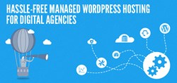 Hassle-Free Managed WordPress Hosting for Digital Agencies