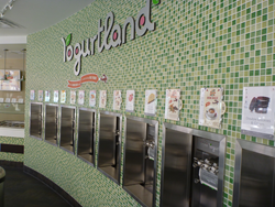 Froyo, flavors, yogurtland, custom, create