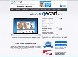 low cost professional web sites
