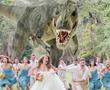 wedding photos,bridal photos,bridal videography,personal wedding photos