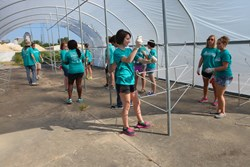 Students from the Environmental Sustainability house build greenhouse