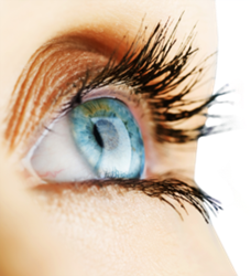 Close up of woman's bright blue eye