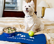 Furry Kids Dine 'On the House' with New Package for Pet Parents from...