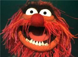 Muppet Meeting