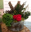 dried flowers, dried flower arrangement, preserved flowers, preserved flower arrangment, preserved flowers dallas
