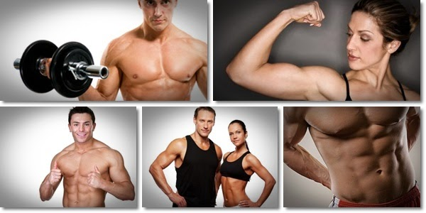 Image result for increase muscle